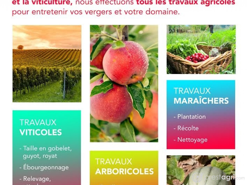 services agricoles  ri